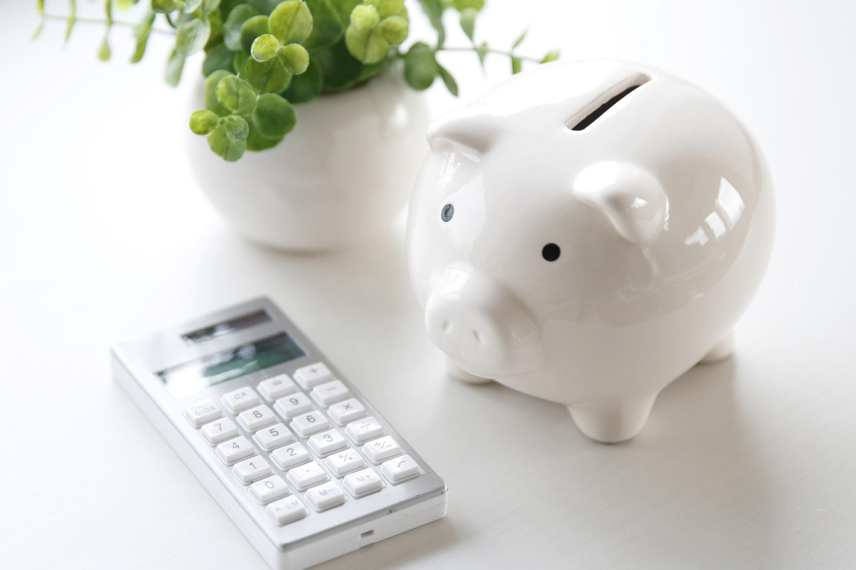 Das Bild zeigt eine blütenlose, grüne Pflanze, ein weißes Sparschwein und einen silbernen Taschenrechner auf einem weißen Tisch.