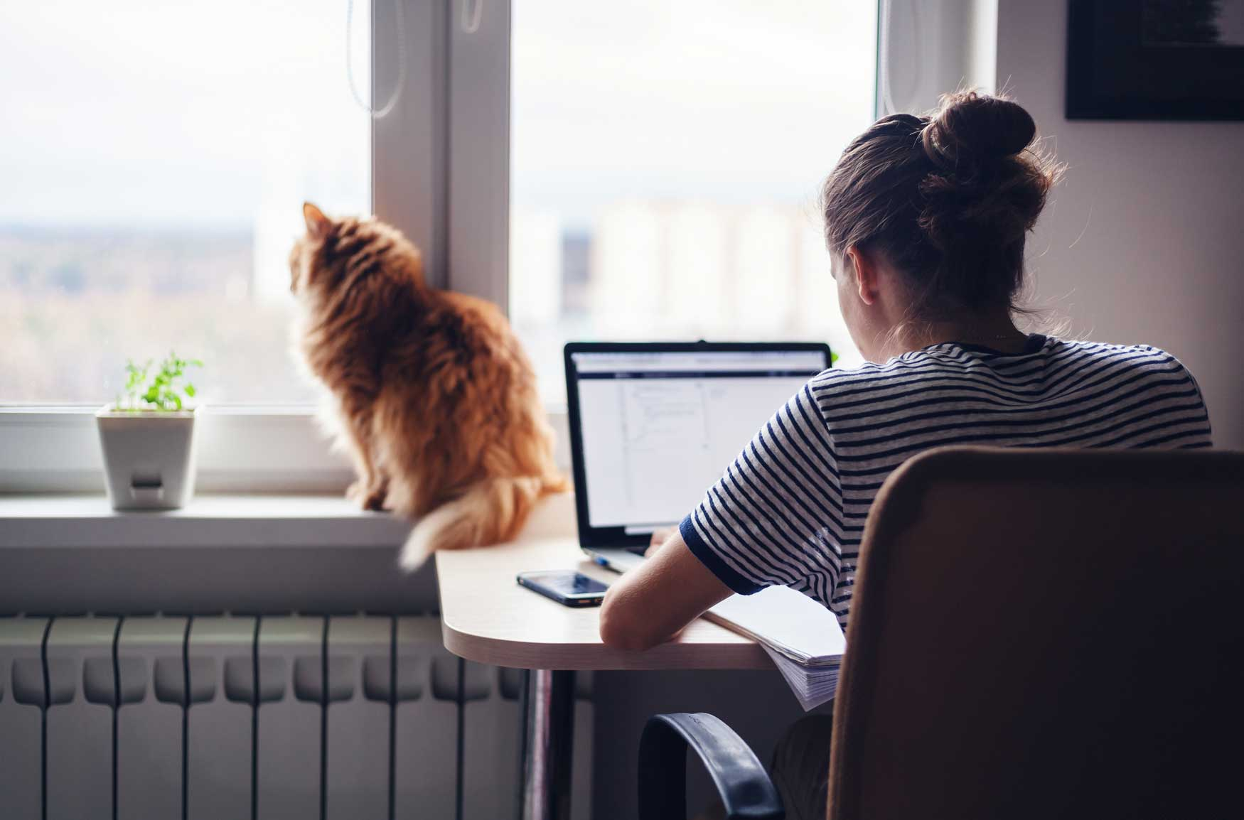 Junge Frau arbeitet dank flexibler Arbeitszeiten von Zuhause aus.
