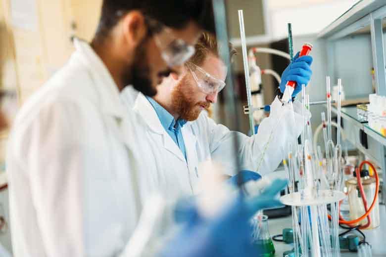 Studenten an der Universität arbeiten gemeinsam im Labor