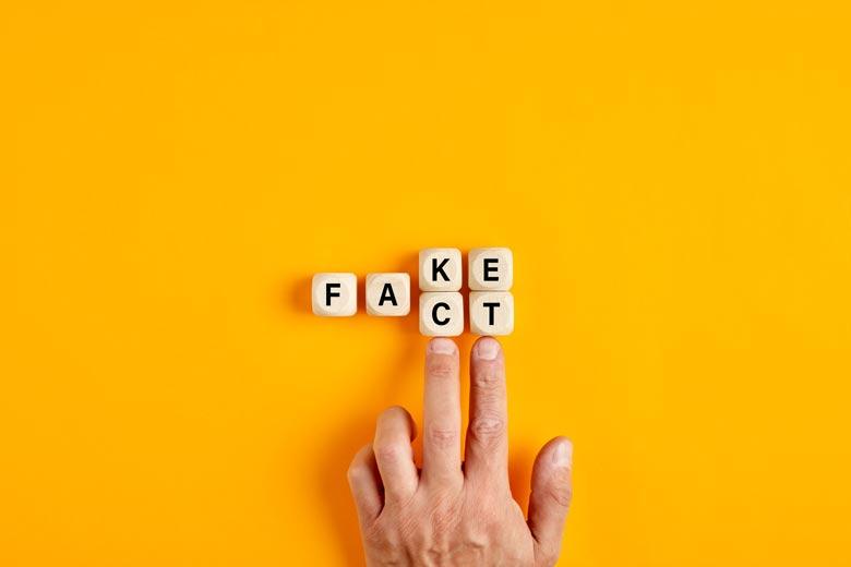 Wechselspiel zwischen fake und fact mit wuerfeln gelegt