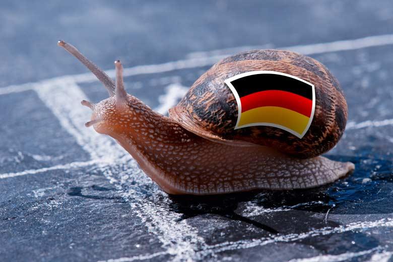 Schnecke mit Deutschlandfahne